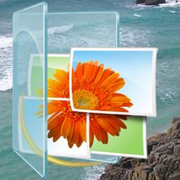 Current Version Plugin Windows Live Photo Gallery
